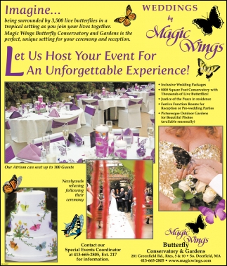 Let Us Host your Event